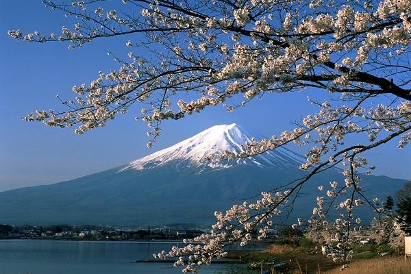 8 Lý Do Vì Sao Bạn Nên đi Du Lịch Nhật Bản