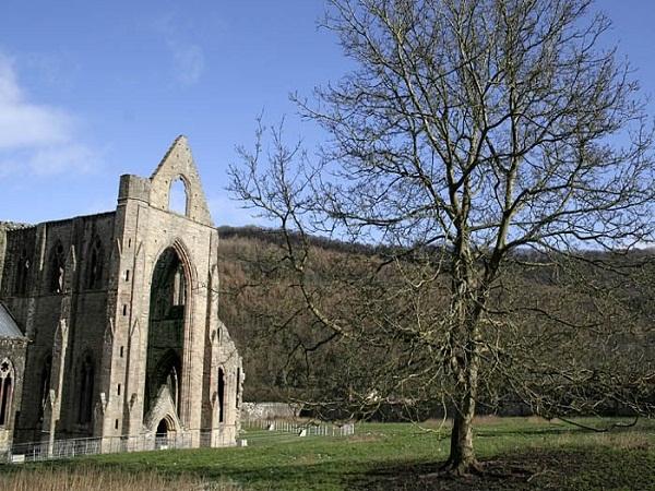 Học Viện Xứ Wales Và Đại Học Gloucestershire