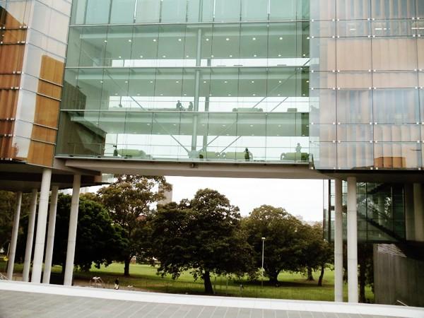 Vẻ đẹp của khu vườn cổ trong khuôn viên Đại học Sydney