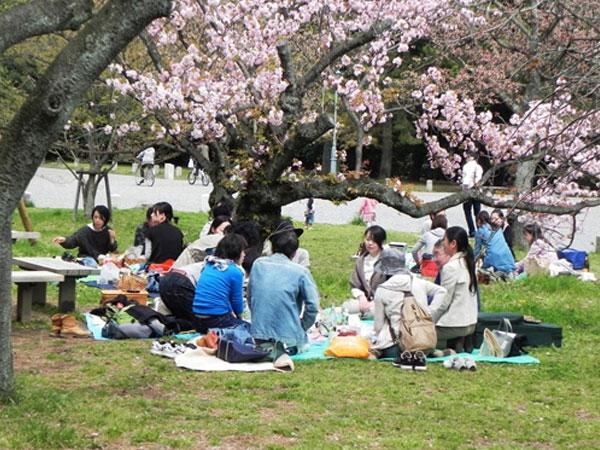 Giao Tiếp Với Người Nhật Dễ Hay Khó