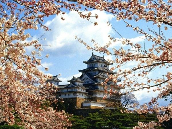Đừng Quên Những điều Này Khi đi Du Học Nhật Bản