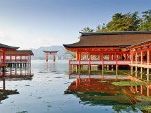 Cùng Du Học Sinh Chiêm Ngưỡng Vẻ đẹp Bốn Mùa Tại Nhật Bản