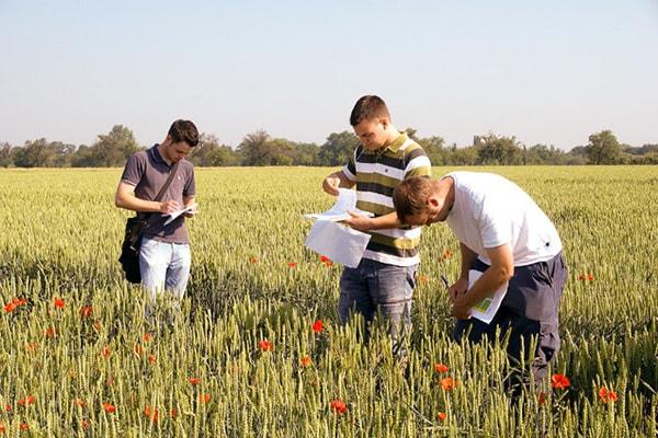 Du học Mỹ ngành Nông nghiệp