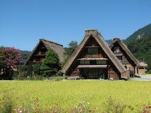 Shirakawago - Làng Cổ độc đáo Nhất Xứ Sở Hoa Anh đào