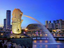 Vì Sao Bạn Bị Từ Chối Khi Xin Visa Du Học Singapore?