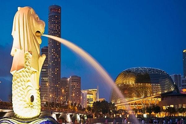 Nên chọn ngành nào khi du học tại Singapore? 1