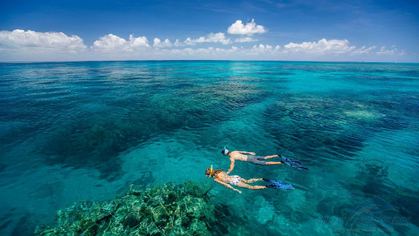Rạn san hô Great Barrier - rạn san hô lớn nhất thế giới