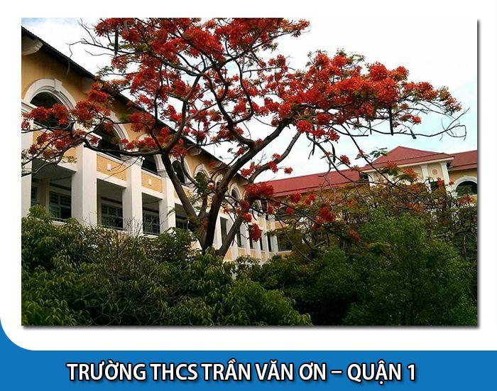 Trường Trần Văn Ơn - Quận 1 - Tp Hồ Chí Minh
