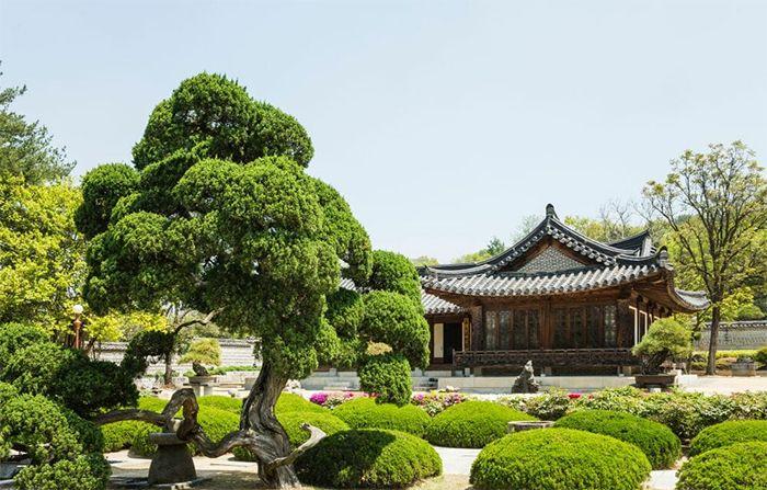 Nghệ thuật vườn cảnh ở Hàn Quốc
